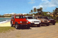 Rent a Jeep and go beach hopping on Vieques PR